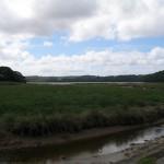 Fal River Estuary Ruanlanihorne